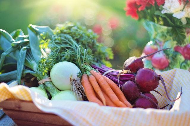 Dieta wege - skąd wynika jej popularność?